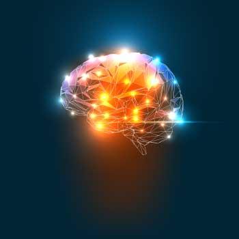 neuroscience, psb, SASH