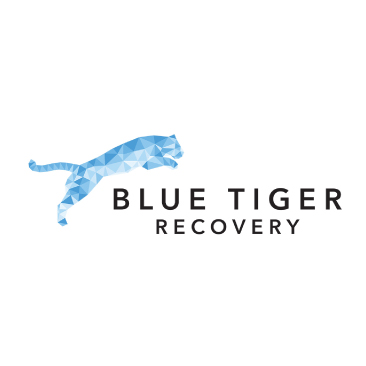 Blue Tiger Recovery